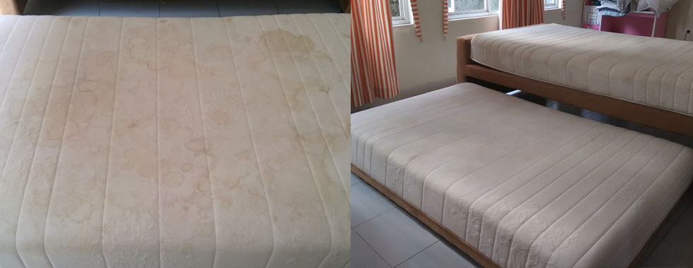 CUCI SPRING BED SINGLE
