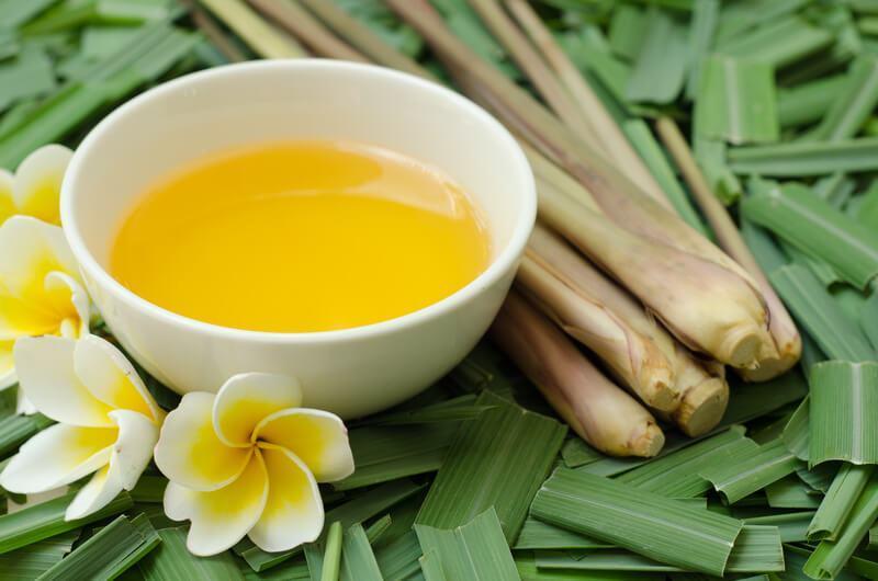 manfaat citronella oil